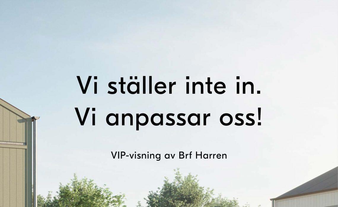 VIP-visning_1440
